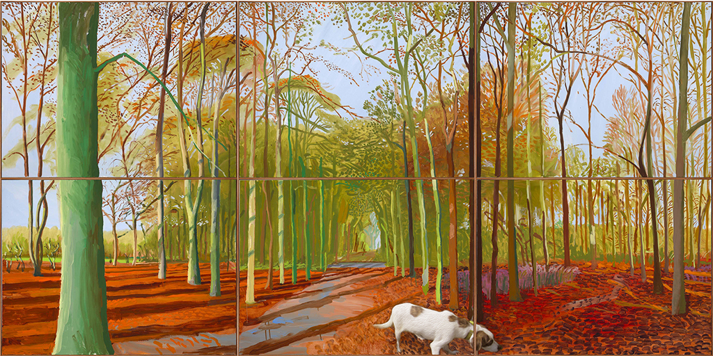 Blue investigates Mr Hockney's Forest and Just smells Stuff