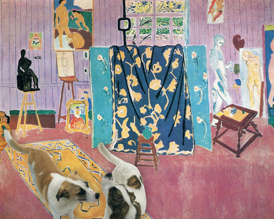 The Pups Enjoy Matisse's Studio No End